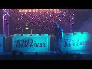 THE WORLD OF DRUM AND BASS 2011 ARENA MOSCOW