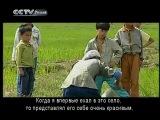 CCTV - Видео блог на русском языке - Путешествия в Китай - Белоголовые листовые обезьяны